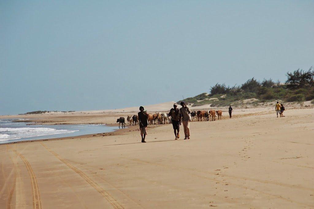 spiaggia di mambrui