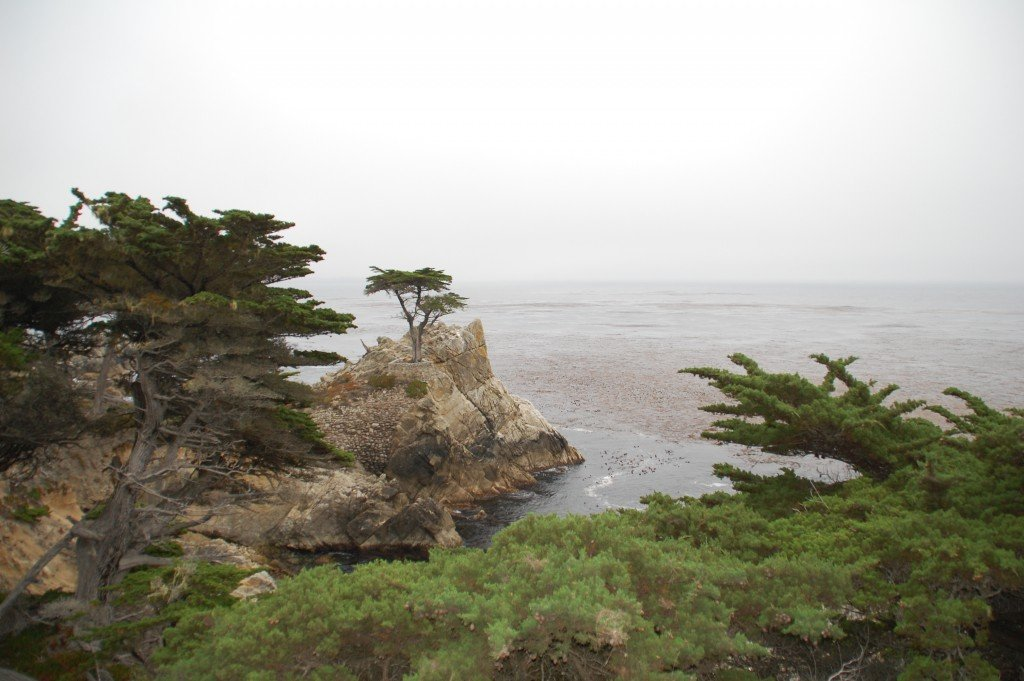 California_da_sapere