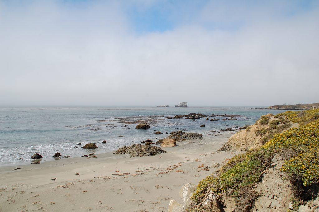 Cosa-vedere-in-California