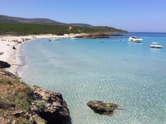 Corsica cosa vedere